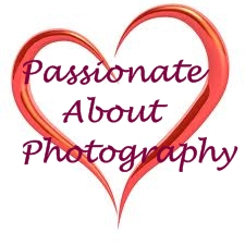 heart passionate about photography